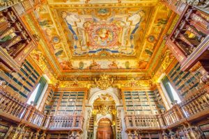 One such library in the world, where bats have been raised for protection from termites
