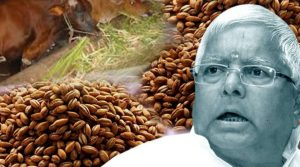 Bihar News : Lalu may go to jail again soon, supporters and family are praying
